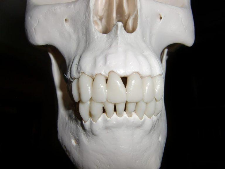 Specjalistyczne zabiegi z zakresu stomatologii